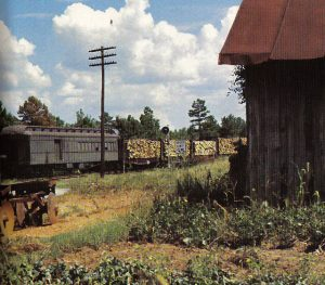 Georgia RR Atlanta-Augusta mix local, photo John Coyle from Flickr